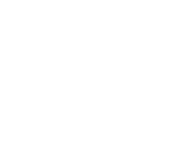Chapple Construction